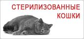 Сухой корм для стерилизованных кошек Роял Канин • Royal Canin